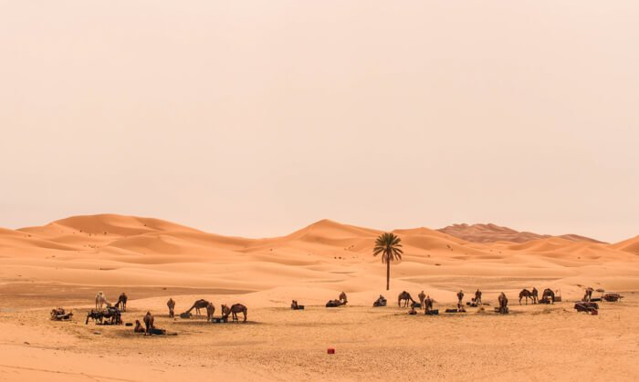 Road Trip Morocco: The Ultimate Morocco Itinerary
